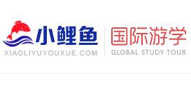 郑州做教育咨询类网站那家好